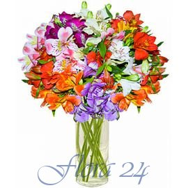 Цветы в макеевке купить какой необычный подарок на 14 февраля